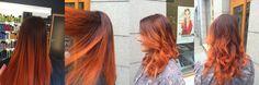 orange ombre - Colors of Wonderland by Alice