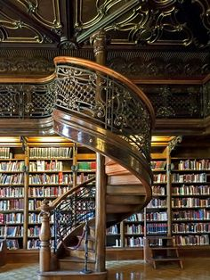 Nicks dream home library