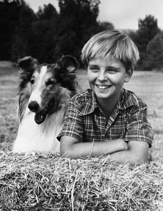 Jeff and Lassie  If only there was more television like this.  OH LASSIE HOW I LOVED THAT SHOW . This is the Lassie show of the 50's.  Tommy Rettig played Jeff.  Timmy cane later, after Jeff grew up.