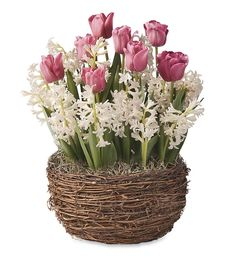 Pink Tulips And White Hyacinths In Vine Basket | Flowers