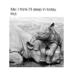 Photo by Tortured By Toddlers in FML with @wedlocked. Image may contain: text that says 'Me: I think I'll sleep in today. Kid: @wedlocked'. Funny Mom Memes, Mom Humor, Have Some Fun, Garden Sculpture, Toddlers, Sleep, Photo And Video, Image, Kids