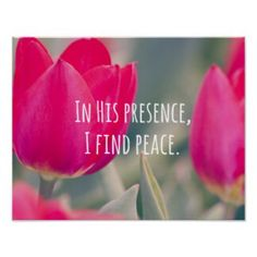 """John 14:27   """"Peace I leave with you, My peace I give to you; not as the world gives do I give to you. Let not your heart be troubled, neither let it be afraid.""""  John 16:33   """"These things I have spoken to you, that in Me you may have peace. In the world you will have tribulation; but be of good cheer, I have overcome the world.""""  Philippians 4:6-7    """"Be anxious for nothing, but in everything by prayer and supplication, with thanksgiving, let your requests be made known to God; and the…"""