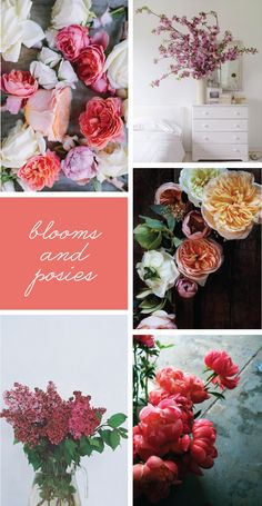 Blooms + Posies- to add some color in this in-between weather :)
