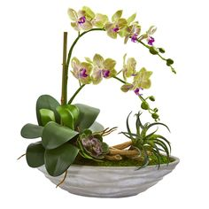 Nearly Natural Indoor Phalaenopsis Orchid and Succulent Artificial Arrangement in White Vase 1714 - The Home Depot Arrangements D'hortensia, Orchid Flower Arrangements, Orchid Planters, Orchid Centerpieces, Succulent Arrangements, Succulents, Orchid Vase, Silk Orchids, Phalaenopsis Orchid