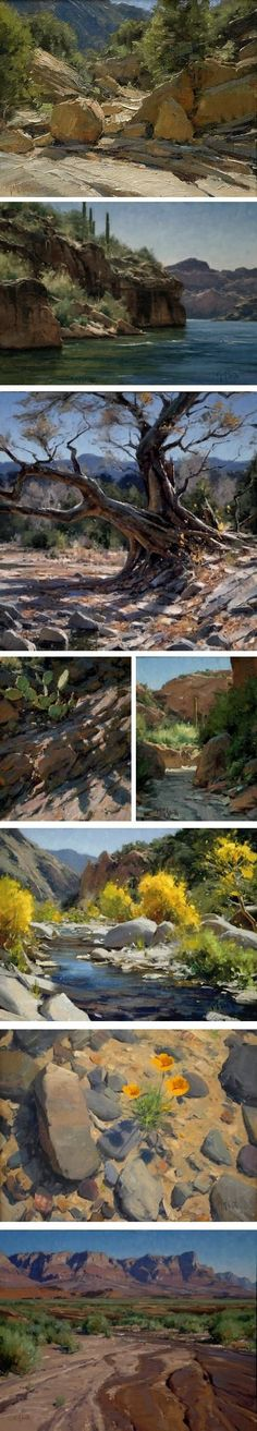 These are so beautiful! Search Matt Smith at this site and learn. Little more about this Arizona artist. - very nice site that is filled with beautiful art work. Beautiful Paintings, Beautiful Landscapes, Landscape Art, Landscape Paintings, Desert Art, Guache, Wow Art, Matte Painting, Traditional Paintings