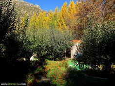 Ruta por la Garganta de #Navalacruz #Avila #senderismo #turismo #mirecreo #nature #otoño #autumn #spain #castillayleon