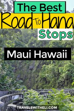 The Ultimate Guide to Maui's Road to Hana Stops. The best banana bread, waterfalls, black sand beaches, and how to drive the Road to Hana with kids. Hawaii Vacation Tips, Family Vacation Destinations, Hawaii Travel, Vacation Spots, Travel Usa, Beach Vacations, Travel With Kids, Family Travel, Hawaiian Cruises