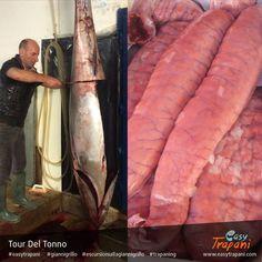 Scopri altre Immagini sui tour del tonno e 'not only fish market' su: http://www.easytrapani.com/altra-escursione.php?id=128  http://www.easytrapani.com/altra-escursione.php?id=135  #Trapani #easytrapani #trapaning #giannigrillo #escursionigiannigrillo #tonno #tonnorosso #tuna #redtuna #tripadvisor #food #tradizione #Sicilia #Sicily #Westernsicily #picoftheday #instagood #instagram #instafood #pesce #fish #market #fishmarket i#instaphoto #foodporn