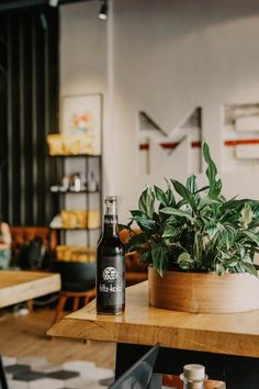 Fantastic diy decor tips are offered on our web pages. Take a look and you wont be sorry you did. Fritz Kola, Good Marriage, Something To Do, Living Room Decor, Beverages, Alcohol, Bottle, Modern, Projects