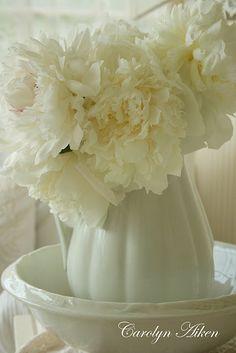 white. Carolyn aiken ~ aiken house & garden