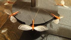 Detailed instructions for tying a Wally Wing Rusty Spinner.