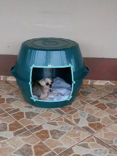Casa de bacia para pets