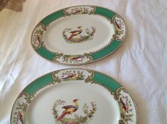 Green oval serving pieces