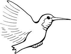 desene de colorat pasare colibri