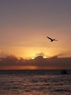 Florida Keys - Key West Sunset  December 2013