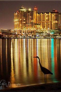 Destin Harbor ~ Harborwalk Village ~ Emerald Grande at Night ~ DESTIN, FLORIDA ~ BEAUTIFUL FL BEACH BEACHES