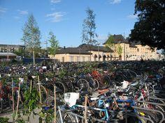 Bicycles parking, Uppsala  (author: Elisa Gavilán)