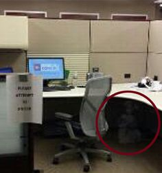 #RealGhostPictures: The Little #GhostGirl Hiding Under The Desk @Paranormal360