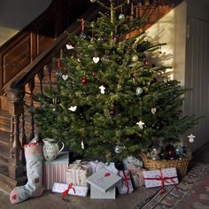 Lovely old staircase with Christmas tree Christmas Hearts, Christmas Room, Magical Christmas, Merry Little Christmas, Beautiful Christmas, Winter Christmas, All Things Christmas, Christmas Staircase, English Christmas