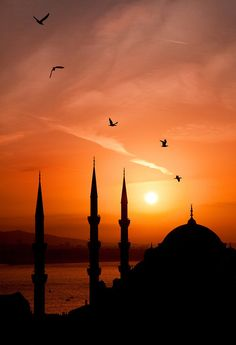 Capturing silhouette of Blue Mosque, Istanbul, Turkey in an evening Sunset. Wonderful Places, Beautiful Places, Places Around The World, Around The Worlds, Foto Blog, Amazing Sunsets, Foto Art, Beautiful Sunrise, Cairns