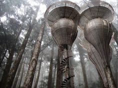 .Antony Gibbon - Roost Treehouse. Designed to mimic the organic curvaceous forms found in nature. The aim was to create a tree house that could blend in and almost become part of the tree itself, becoming camouflaged in the surrounding forest. http://www.antonygibbondesigns.com
