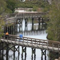 150 Free and Cheap Things to Do in Bradenton,FL   TripBuzz