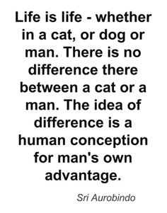 Sri Aurobindo Quote Find Quotes, Love Me Quotes, Best Quotes, Spiritual Thoughts, Deep Thoughts, Sri Aurobindo, Street Dogs, Divine Mother, Morals