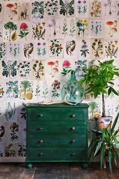 Best Retro home decor ideas - Super retro and warm information. retro home decorating bedroom image plan ref 1567512050 pinned on this day 20190609 Bedroom Decor, Wall Decor, Master Bedroom, Master Bath, Bedroom Ideas, Green Sofa, Green Walls, Retro Home Decor, Home And Deco