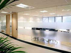Glass Wall - Avanti system full-height glazed walls. Interesting idea for separation of space but allowing light in.