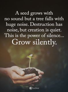 Silence Quotes A Seed grows with no sound but a tree falls with huge noise. Destruction has noise, but creation it quiet. This is the power of silence. Positive Thoughts, Positive Vibes, Positive Quotes, Now Quotes, Best Quotes, Favorite Quotes, Power Of Silence Quotes, Uplifting Quotes, Inspirational Quotes