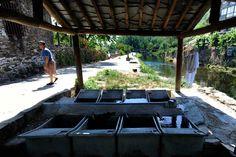TANQUE COMUNITÁRIO - Rio de Onor é a última aldeia comunitária do concelho de Bragança. - E agora quem manda aqui? - PÚBLICO