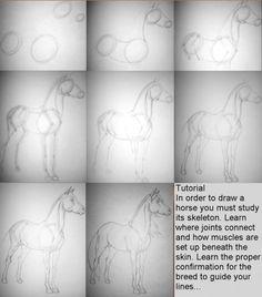 Horse Tutorial by *ResidualHaunt on deviantART