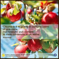 Chiunque è in grado di contare i semi di una mela, ma nessuno può contare le mele contenute in un seme... Anonimo