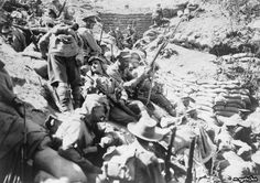 29 Mayıs 1915 tarihinde Gelibolu arkasında 4. Avustralya Piyade Tugayı destek birlikleri.
