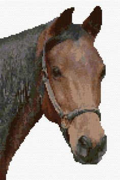 Horse Cross Stitch Pattern