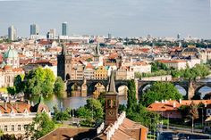 """Visit Prague the """"Golden City"""" on the Vltava river. Discover grand buildings, the city centre and the cultural flair of the beautiful city. Day Trips From Vienna, Prague Guide, Vienna State Opera, Visit Prague, Free Hotel, Bus Travel, The Way Home, Day Tours, Walking Tour"""