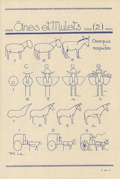 les animaux 59 Anes et mulets2 ....reépinglé par Maurie Daboux ❥•*`*•❥