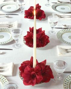 Amaryllis candle centerpiece Would look pretty with poinsettias, too.