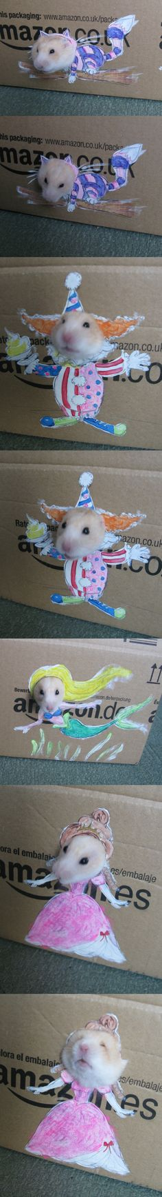 Hamster Dress Up... an alternative to torturing them with actual clothing :)