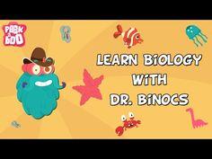 50 Best Dr  Binocs Show!!! images in 2017 | Science videos