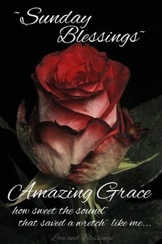 Have a wonderful Sunday.Love all of you.Amazing.Amazing Grace for all of us.