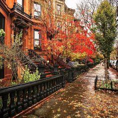 Autumn in Brooklyn, New York, United States.