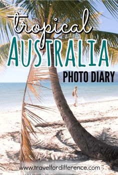 Tropical Australia Photo Diary - Photos of Far North Queensland