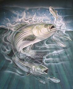 Striped Bass Striper Fish, Gone Fishing, Bass Fishing, Fish Model, Fish Silhouette, Fish Icon, Underwater Art, Fish Drawings, Marine Conservation
