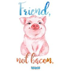 Defend Animals · PETA-Approved Vegan T-Shirts & Cruelty-Free Clothing for animal rights activists ? Vegetarian Tattoo, Vegetarian Quotes, Vegan Quotes, Vegetarian Recipes, Mercy For Animals, Vegan Tattoo, Vegan Memes, Vegan Animals, Animal Quotes