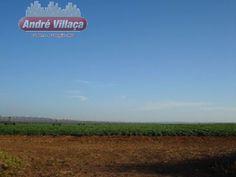 Fazenda - Buritizeiro - Norte De Minas