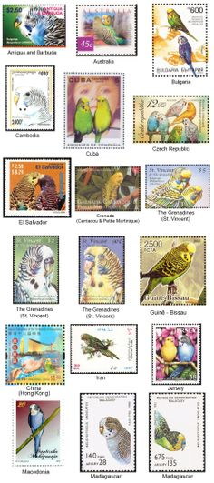 funny budgie comics | Budgie stamps. All the cool countries have them.