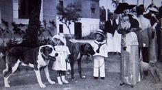 """Algunos ejemplares presentados en el concurso de perros celebrado en el """"Turo- Parch"""" de Barcelona el 5 de Julio de 1912. Some exemplars presented in the Dog Show, celebrated in the """" Turo - Parch """" of Barcelona On July 5, 1912."""