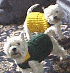Hand knit dog coat pattern