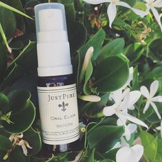 Our handy Oral Elixir is the perfect size to fit in your handbag for 24 hour confidence. With Colloidal Silver and Eucalyptus, Peppermint & Thyme essential oils, this is fast acting breath freshener is safe, non-toxic and a great addition to your daily oral hygiene.     Your dentist is sure to approve of this kind of #loveJustPure ⚜️ Thyme Essential Oil, Oral Hygiene, Peppermint, Confidence, Acting, Pure Products, Fit, Instagram Posts, Silver